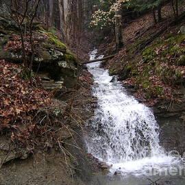 R A W M   -           Frothy Falls