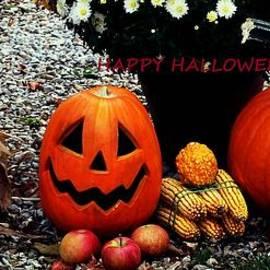 R A W M   -             Halloween