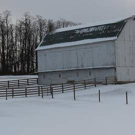 R A W M   -          McKay Farm