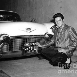 R A W M   -        Elvis Presley
