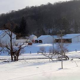 R A W M   -      Westbrook Farms