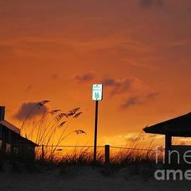 Bob Sample - Orange Sunset With Sea Oats Silhouette