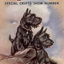 The Advertising Archives -  1930s Uk Dogs