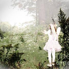 Jim Cook -  A Garden Fairy