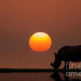 Bahadir Yeniceri -  African Sunset