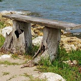 Cynthia Guinn -  Bench By The Sea
