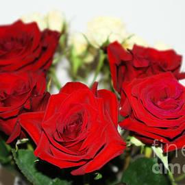 Oksana Semenchenko -  Bouquet of Roses