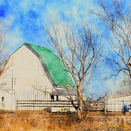 Liane Wright -  Farm - Barn - A Nice Sunny Day