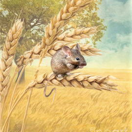 Trudi Simmonds -  Field Mouse