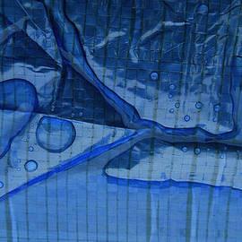 Colette V Hera  Guggenheim  -  Fresh Rain Drops Garden Table Spring