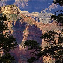 Saija  Lehtonen -  From The North Rim of the Grand Canyon