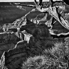 Bob and Nadine Johnston -  Grand Canyon Hermit View