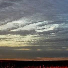 PainterArtist FIN -  Kansas Prairie Grass Sunrise