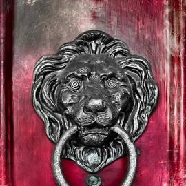 Colleen Kammerer -  Lion