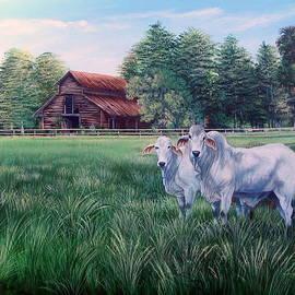Daniel Butler -  Okeechobee Brahma Bulls- Red Barn