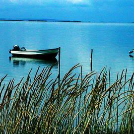 Colette V Hera  Guggenheim  -  Peaceful Samsoe Island Denmark