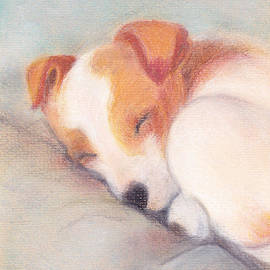 Yggdrasil Art -  Puppy Sleeping
