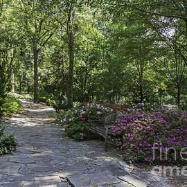 John Zawacki -  Rhododendron Garden