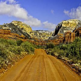 Bob and Nadine Johnston -  The Red Rock-Secret Mountain Wilderness