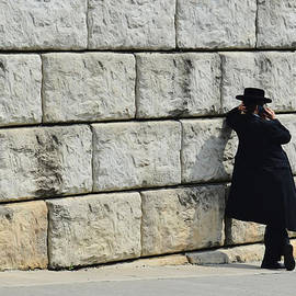 Sue Rosen -   The Wall