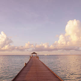 Jenny Rainbow -  Zen Retreat. Brand New World