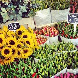 Nadezhda Karavaeva - Flower market