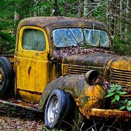 Lisa  Telquist - 1941 Dodge Pickup