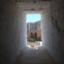 Sarra Elgammal - Alhambra Palace