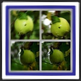 Klaas Hartz - Apfel