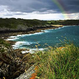 Elena Elisseeva - Atlantic coast in Brittany