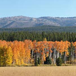 Jacklyn Duryea Fraizer - Autumn Day