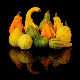 Jim Hughes - Autumn Harvest Gourds