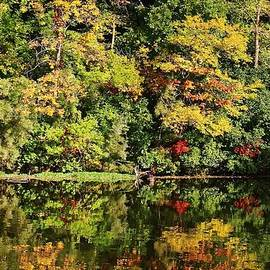 Bruce Bley - Autumn on the Lake