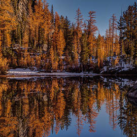 Mike Reid - Autumn Reflected