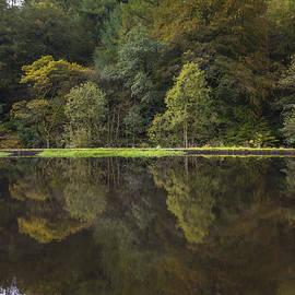 Chris Smith - Autumn  Reflection
