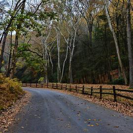Paul Ward - Autumns Road