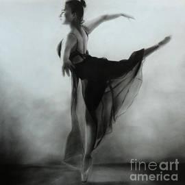Artist Vivekananad Patil - Ballet series