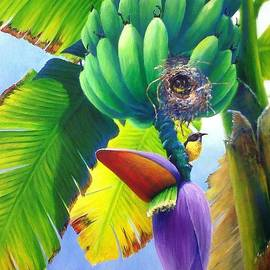 Christopher Cox - Bananaquits and bananas