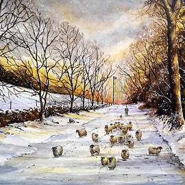 Andrew Read - Bringing home the sheep