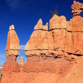 Aidan Moran - Bryce Canyon