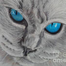 Amber Nissen - Cat