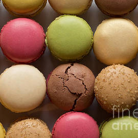 Stephen Allen - Colorful Macaroons