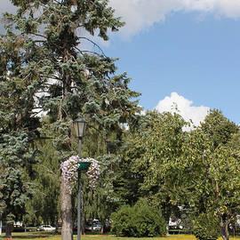 Evgeny Pisarev - Corner of park