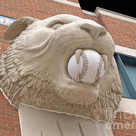 Ann Horn - Detroit Tiger Baseball