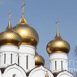 Evgeny Pisarev - Domes