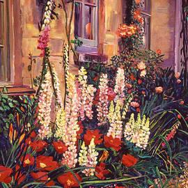 David Lloyd Glover - English Cottage Garden