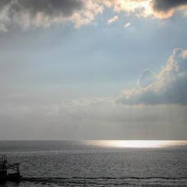 Charlotte Schafer - Evening Trawl