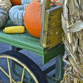 Frozen in Time Fine Art Photography - Farmers Market