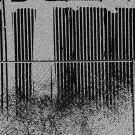 Lenore Senior - Fencelines