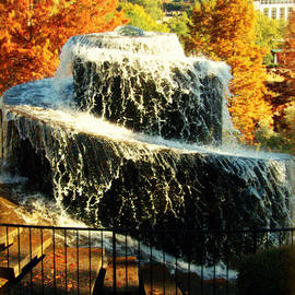Lisa Wooten - Finlay Park Fountain